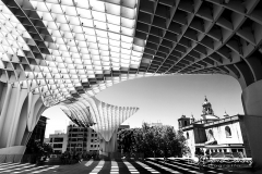Seta de Sevilla
