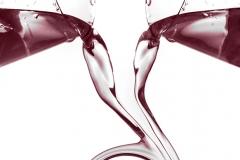fusión de vino 01