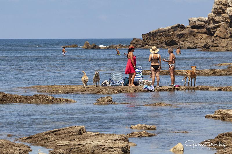 El Rinconín playa para perros en Gijón