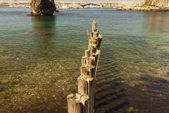 Puerto de Cudillero (1)