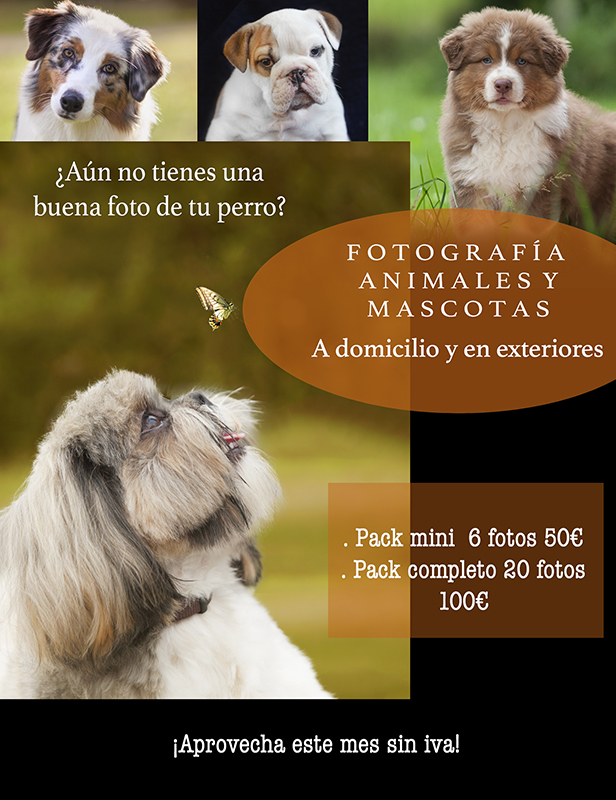 Fotos mascotas Mes sin iva